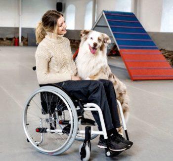 Engelliler için Ürünler